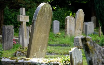 Why Conventional Burial Harms the Environment